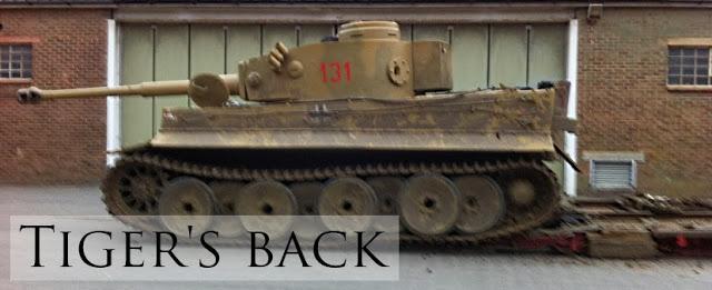2013-12-18___bovtm_tiger_back