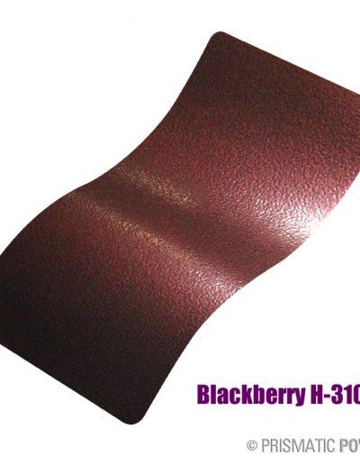 blackberry-h-3100b