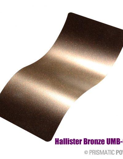 hallister-bronze-umb-6536