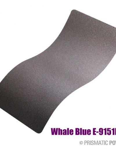 whale-blue-e-9151b