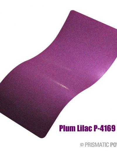 plum-lilac-p-4169
