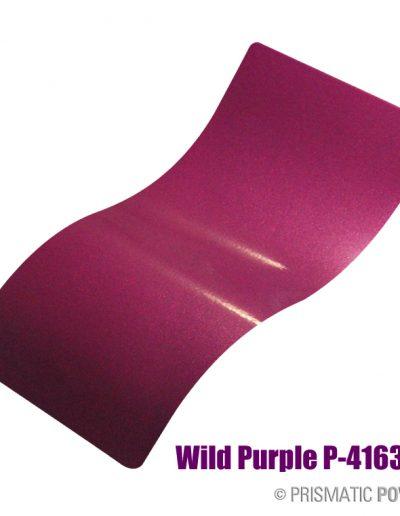 wild-purple-p-4163b