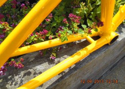 yellowpowdercoated-pedal-bike-7